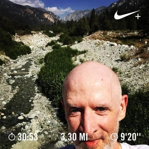 Running Forest Falls